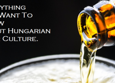 Everything  You Want To Know  About Hungarian Beer Culture.